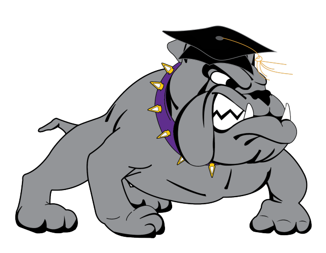 Bulldog with Cap